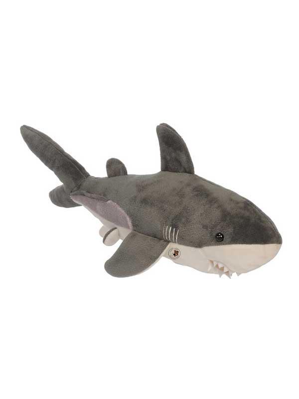 Morski pas – 45 cm