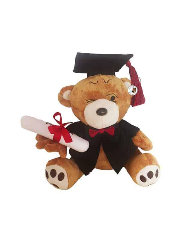 zločesti-plišani-medo-s-diplomom-u-ruci-i-diplomskim-odijelom